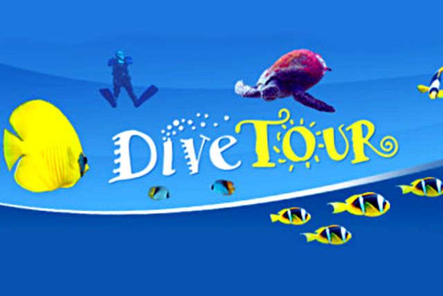 Sieć - Knurów - DIVE TOUR - full image
