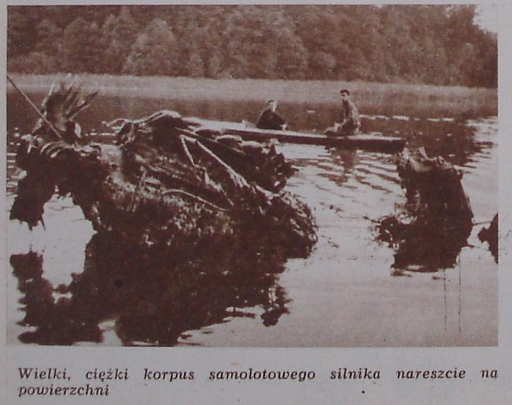 https://m.nurkowa.pl/2014/07/orig/986db-61.jpg