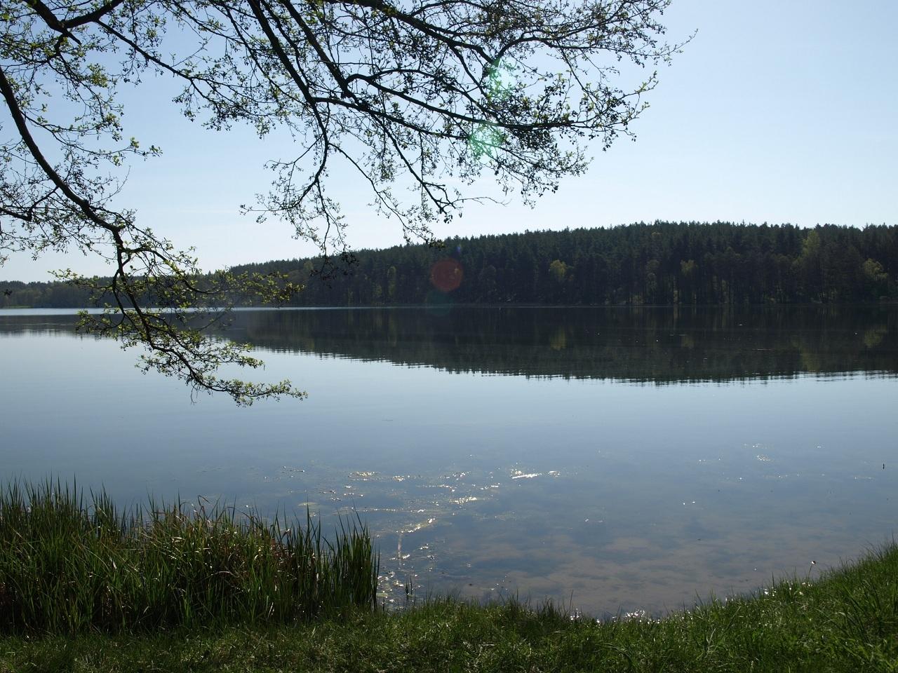 https://m.nurkowa.pl/2014/09/orig/c8a98-340.jpg