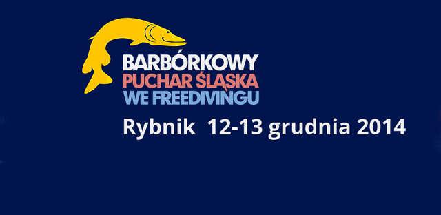 Barbórkowy Puchar Śląska we freedivingu - full image