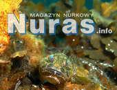Nuras.info - marzec 2015