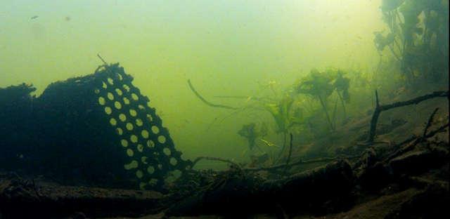 Śmieciowy Spływ Łyną - full image