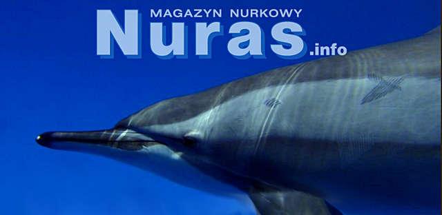 Magazyn Nuras.info - sierpień 2015  - full image