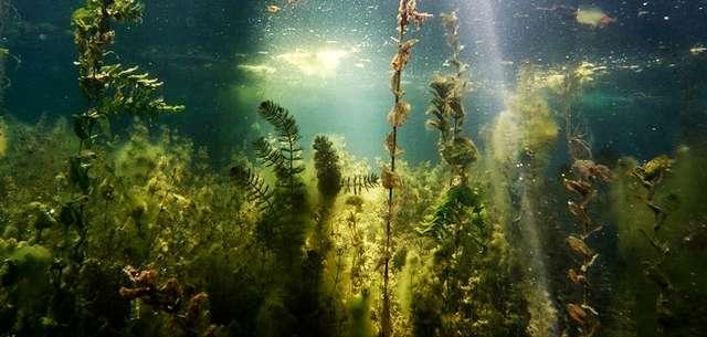 Jezioro Staw - niezapomniane i urokliwe - full image
