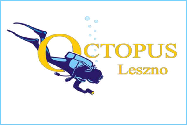 Sieć - Leszno - OCTOPUS - full image