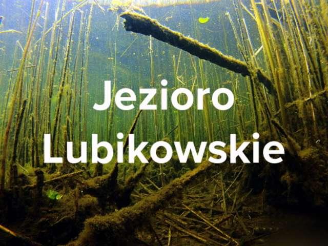Jezioro Lubikowskie (lubuskie) - full image