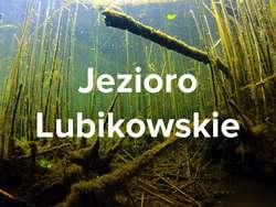 Jezioro Lubikowskie (lubuskie)