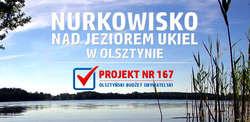 Nurkowisko - wspieramy olsztyńską inicjatywę