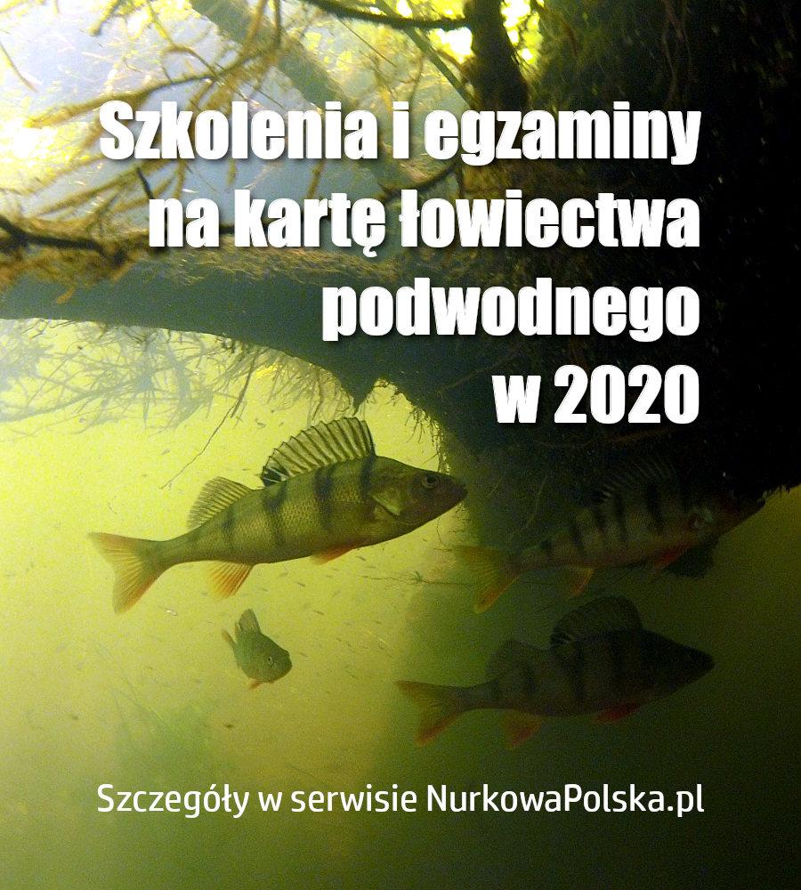 Bądź legalny pod wodą