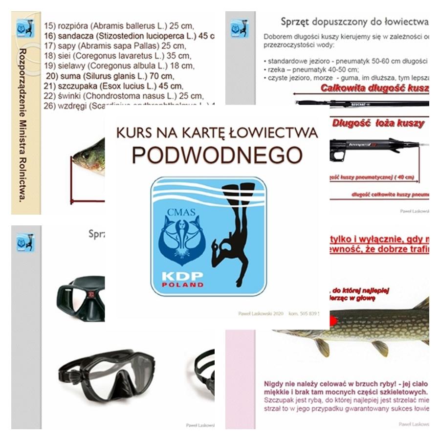 https://m.nurkowa.pl/2021/01/orig/np-lp-21-014aaa-2213.jpg